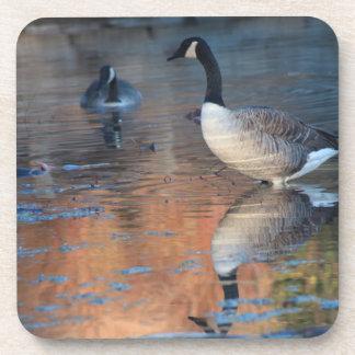 Canadian Goose Cork Coaster