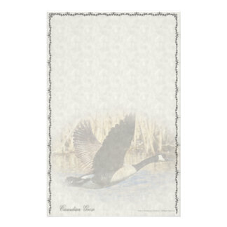 Canadian Goose Custom Stationery
