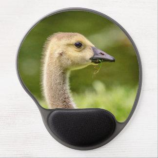 Canadian Goose (Gosling) Gel Mouse Pad