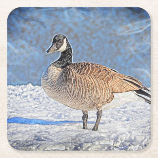 Canadian goose in the snow square paper coaster