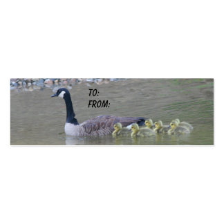 Canadian Goose Mom Babies Nature Gift Tag Double-Sided Mini Business Cards (Pack Of 20)