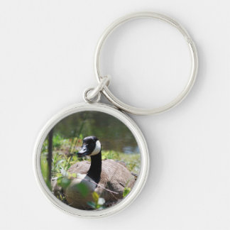 Canadian Goose Nesting Keychain