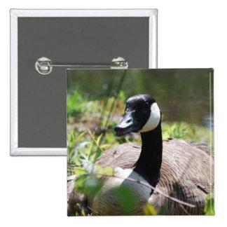 Canadian Goose Nesting Pin