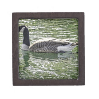 Canadian Goose Premium Trinket Boxes