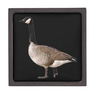 Canadian Goose Premium Gift Box