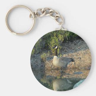 Canadian Goose Reflection Basic Round Button Keychain