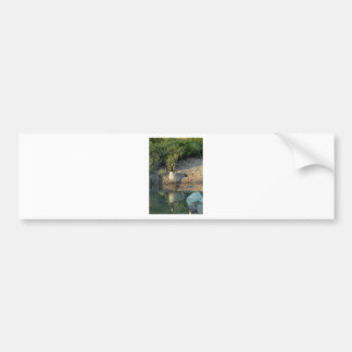 Canadian Goose Reflection Bumper Sticker