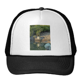 Canadian Goose Reflection Trucker Hat