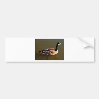 Canadian Goose w/Lazy Leg Bumper Sticker