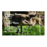 Canadian Gosling Business Card