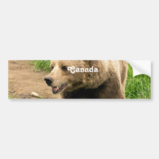 Canadian Grizzly Bumper Sticker