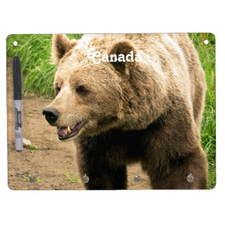 Canadian Grizzly Dry Erase Board With Keychain Holder