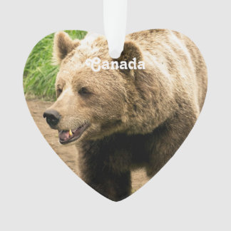 Canadian Grizzly Ornament