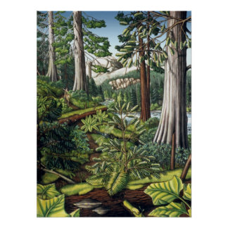 Canadian Landscape Painting Print by Kim Hunter