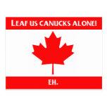 Canadian Leaf Design Postcard