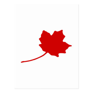 Canadian Leaf - Love Canada National Day! Postcard