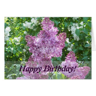 Canadian Lilac Card