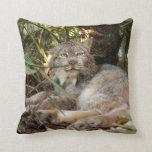 Canadian Lynx 0339e Pillow