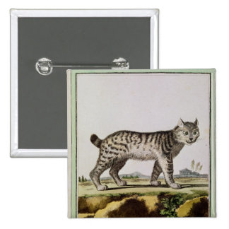 Canadian Lynx 2 Inch Square Button