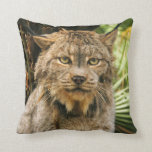 Canadian Lynx 4200e Pillow