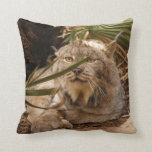 Canadian Lynx 4208 Pillows