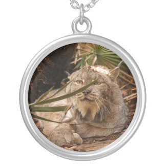 Canadian Lynx 4208 Silver Plated Necklace