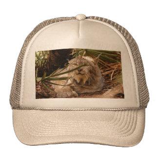 Canadian Lynx 4208 Trucker Hat