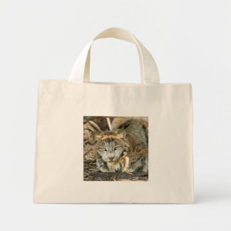 Canadian Lynx 8402e Tote Bags