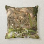 Canadian Lynx 8606 Pillows