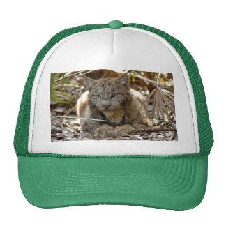 Canadian Lynx 8793 Trucker Hat