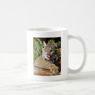 Canadian Lynx - All In Coffee Mug