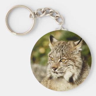 Canadian Lynx Basic Round Button Keychain