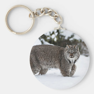 Canadian Lynx in the Snow Basic Round Button Keychain