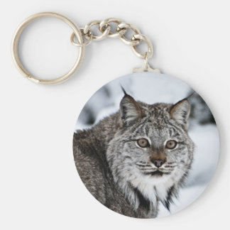 Canadian Lynx in the Snow Key Chain