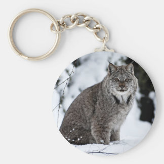 Canadian Lynx in the Snow Keychains