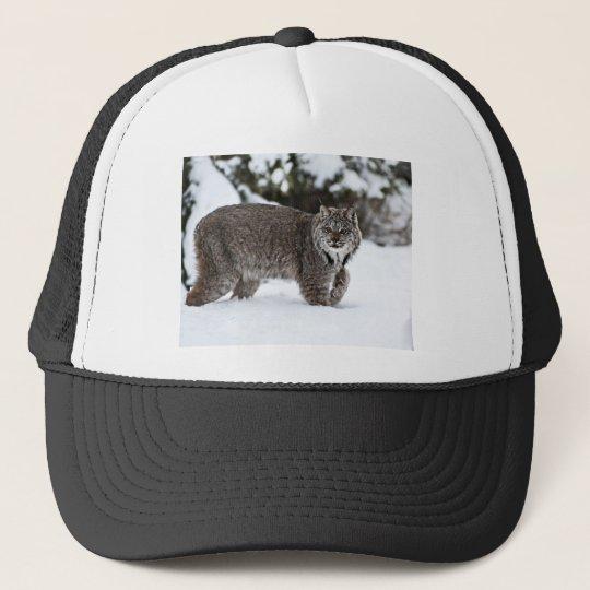 Canadian Lynx in the Snow Trucker Hat