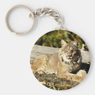 Canadian Lynx Keychains