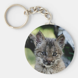 Canadian Lynx Kitten Basic Round Button Keychain