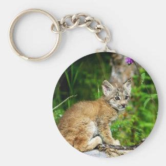 Canadian Lynx Kitten Keychains