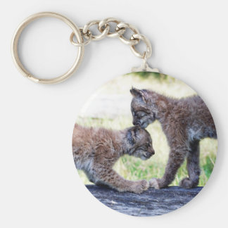 Canadian Lynx Kittens Playing on a Log Key Chains