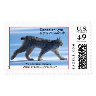 Canadian Lynx (Lynx canadensis) 1 Postage