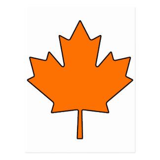 Canadian Maple Leaf Canada National Symbol Postcard