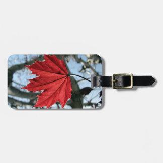 Canadian Maple Leaf Luggage Tag