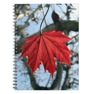 Canadian Maple Leaf Notebook