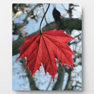 Canadian Maple Leaf Photo Plaque