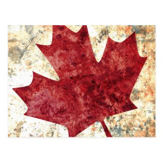 Canadian Maple Leaf Postcard