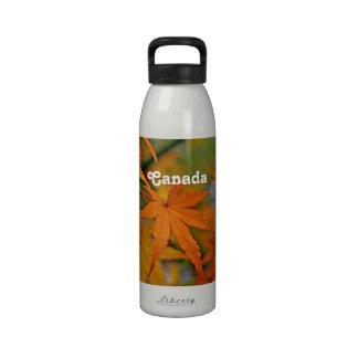 Canadian Maple Water Bottles