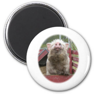 Canadian Miniature Pig 42a 2 Inch Round Magnet