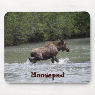 Canadian Moose  Funny Wildlife Mousepad