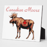 Canadian Moose Photo Plaques